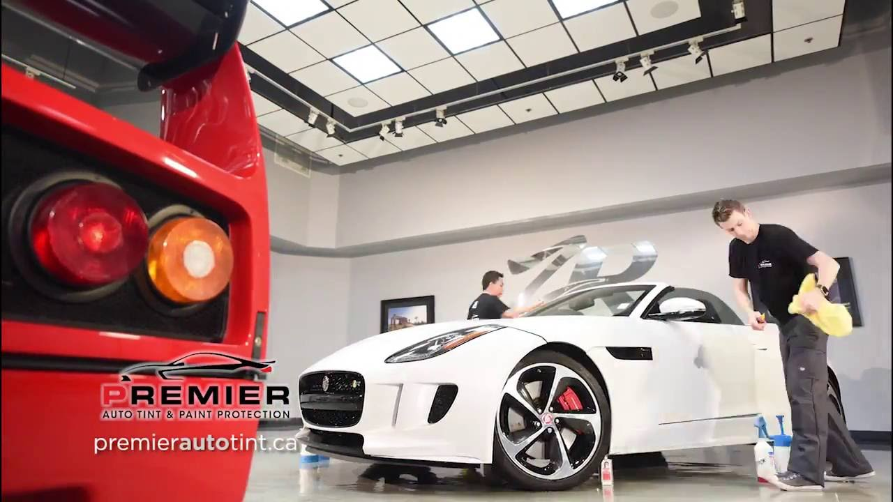 Premier Auto Tint   Calgary s Paint Protection   Window Tint Experts     Premier Auto Tint   Calgary s Paint Protection   Window Tint Experts