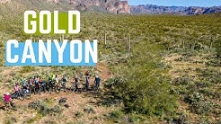 Gold Canyon, AZ | Cacti and blood and SkyNet! | 01/12/2020