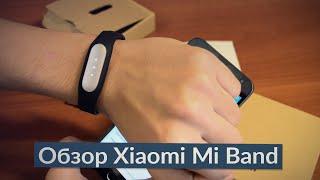 Обзор и распаковка Xiaomi Mi Band + Mi Fit