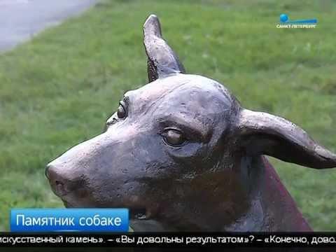 Памятник самому верному другу: в Новой Ладоге установили монумент псу Юрику