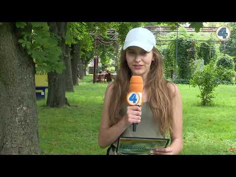TV-4: Тернопільська погода на 20 червня 2019 року