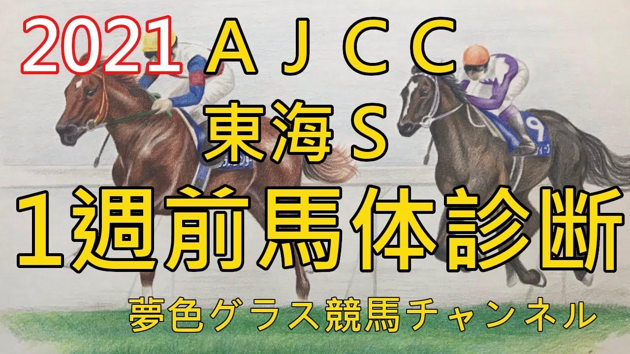 【馬体診断】2021AJCC&東海ステークス!今週は久々に雨?重馬場適性も含めてお話を