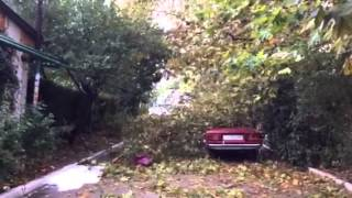 Ураган.Последствия.Утро.Дерево на Машине.Гурзуф.Крым.(, 2014-09-25T10:44:52.000Z)