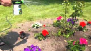 Home Fertilizer.flv(Home Lawn & Garden Concentrated Fertilizing Spray Our certified all-natural foliar spray and soil conditioner for outdoor and indoor gardening produces green, ..., 2011-07-28T19:45:32.000Z)