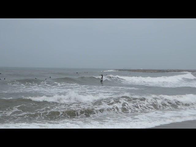 Onades de llevant i surfistes - Barcelona - Febrer 2021