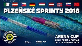 🏊 Plzeňské sprinty 2018