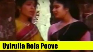 Tamil Song - Uyirulla Roja Poove (Female) - Naan Valartha Poove - Gururajan, Rupini, Senthil