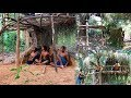 Primitive Tool : Build Simple Tree House ( Make Ladders and wall )