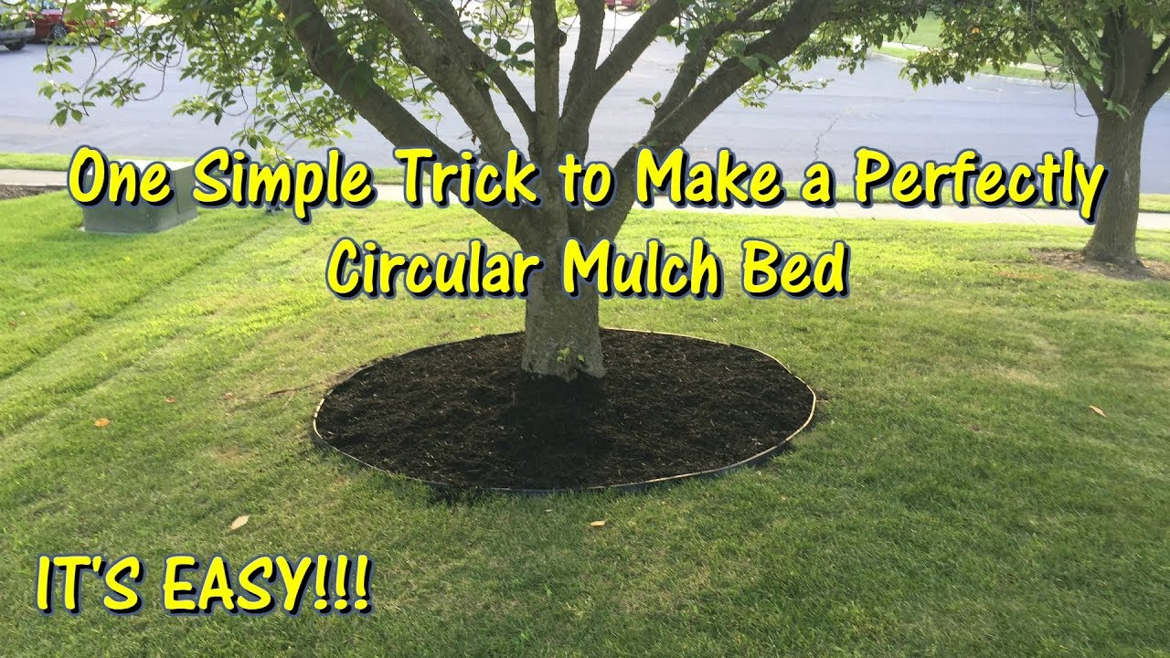 How To Make A Circular Mulch Bed Perfectly By Gettinjunkdone