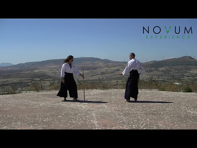 09 Kumi jo kyū - Aikido Novum Experience - Kumi jo Juppon -  組み杖九 - 組み杖十本  - 合氣道 - 合氣杖