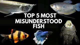 Actually we Learned Wrong Information about these Fishes...