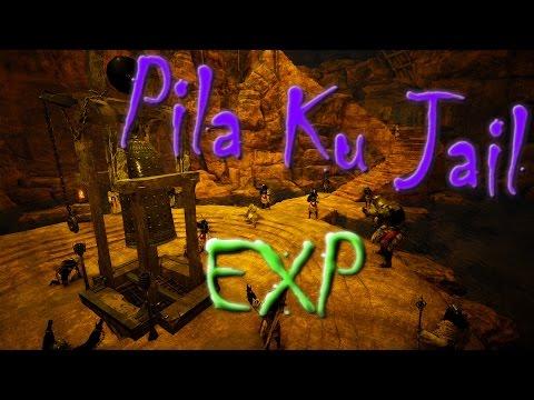 Black Desert Online - Pila Kuku Jail EXP & Rotations  (old