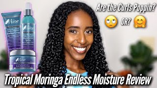 *NEW* The Mane Choice Tropical Moringa Endless Moisture Review & Wash N Go | Natural Curly Hair
