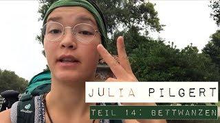 Julia pilgert - Teil 14: Bettwanzen
