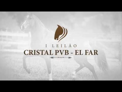 Chamada 1º Leilão Cristal PVB Elfar e convidados