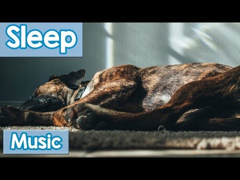 Music for Dogs to Listen to and Relax! Calm Your Sleepless D