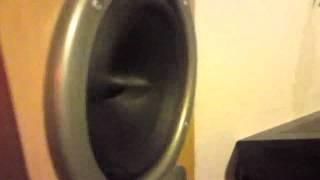 Bass I Love You Überlasteter Lautsprecher / Subwoofer