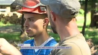 Education : un bac pro dédié aux métiers de la forêt