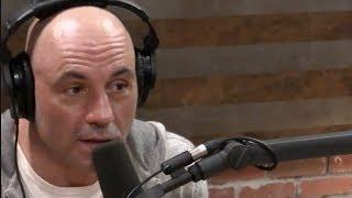 Joe Rogan on MMA Striking vs  Boxing