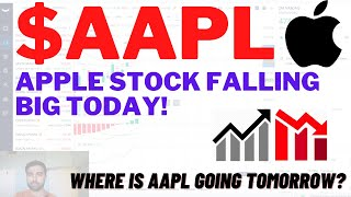 $AAPL APPLE STOCK FALLING BIG TODAY, WHERE TO NEXT? Apple Stock Analysis   Live Wellthy Stocks