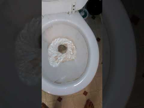 fat-flushing-sperm-down-the-toilet-mendes-maked