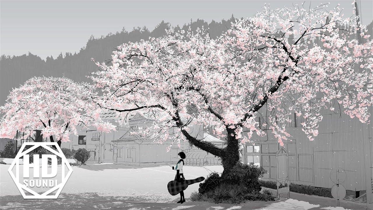 Most Beautiful Music: 'Sakura' by Bob Bradley & Thomas Balmforth