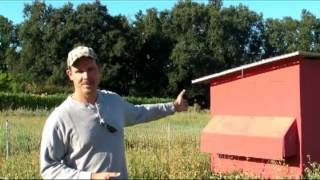 Sustainable Mobile Chicken Coop