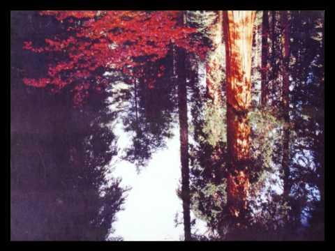 DNTEL - Paper Landscape mp3
