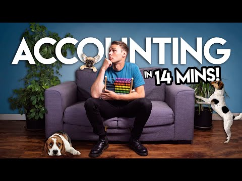 ACCOUNTING BASICS: a Guide to (Almost) Everything