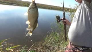 Рыбалка на крупного карася, на реке Чулым.