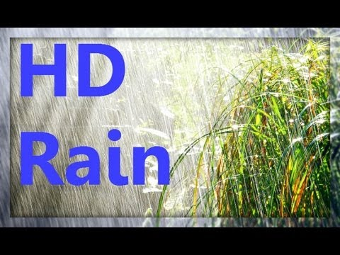 ☂ HD Rain Video - Watch Cold Lush Drops to Relax