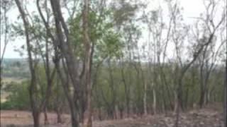 kinu goalar goli o aaro kichu rabindra kabita: Soumitra