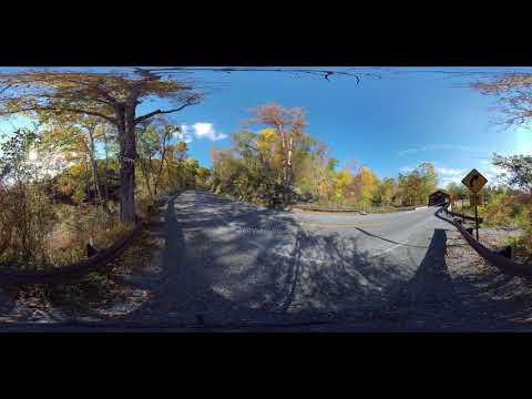 Pennsylvania Fall Bridge watermarked