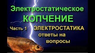 ЭЛЕКТРОСТАТИЧЕСКОЕ КОПЧЕНИЕ .Ч.1. Электростатика, ответы на вопросы