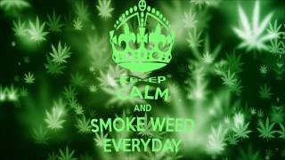 Snoop Dogg - Smoke Weed Every Day (Dubstep Remix) [HQ][HD]