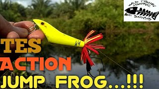 Download Video TES Action Jump Frog..!!! MP3 3GP MP4