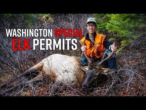 Washington Special Elk Hunt & Permit System | Special Permits Edition