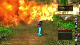 World of Warcraft - Zul'Gurub Mount Run and Jin'Do Kill Explaination