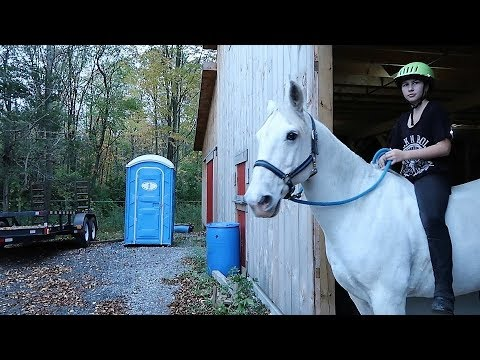 GIVING UP OUR LEASE HORSES Day 284 (10/13/17)