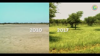 From deserts to forest: our project in Burkina Faso