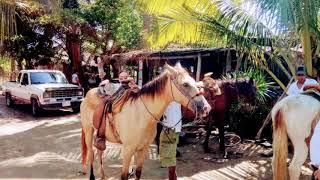17-09-2019 -- Equitacion en Barra Vieja y Liberación de Tortugas por Mario.