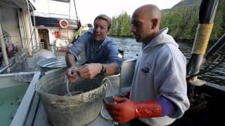 Bering Sea Crab Fishermen