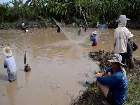 งานลงปลาบ้านดงแสนสุข 58 อำเภอคำตากล้า  จังหวัดสกลนคร