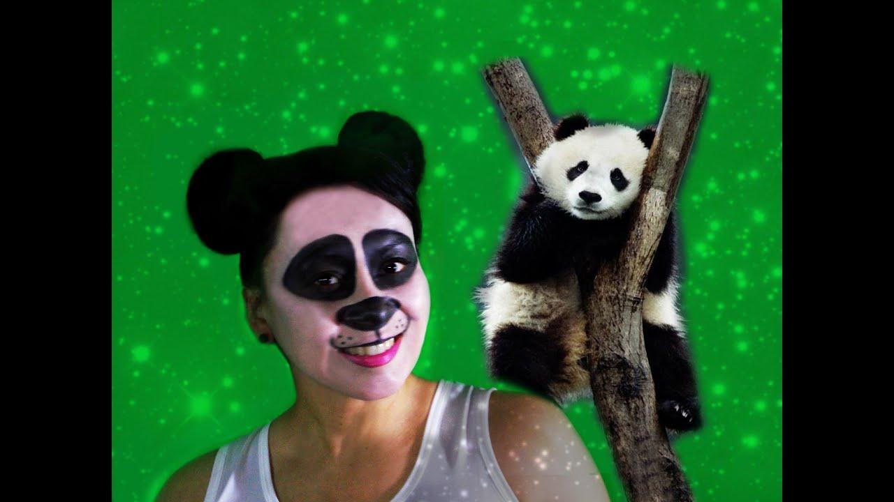 Maquillaje Panda , Panda Makeup