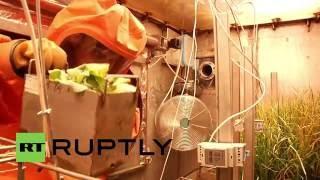 تجارب روسية لتمكين البشر من الحياة على القمر والمريخ