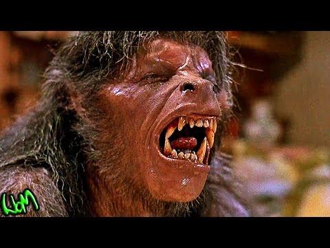 An American Werewolf in London 1981 Werewolf Transformation! - In Depth