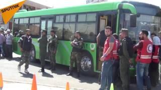 بالفيديو: المسلحون في حمص حملوا حقائبهم المثقلة بخيبة الأمل