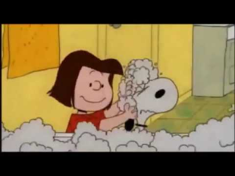 Fundamental Friend Dependability Snoopy 😂😂