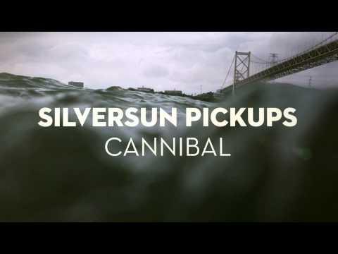 Silversun Pickups -