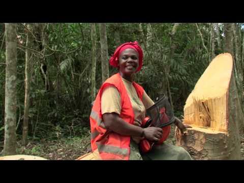 Les premières forêts communautaires du Gabon - Le film (1/3)
